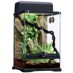 exo_terra_rainforest_kit_2