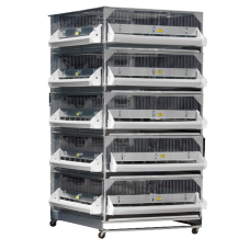 GQF Manufacturing Deck Game Bird-Poultry Battery 5 Box Brooder 0540