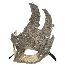 RedSkyTrader Womens Fancy Lace Mask