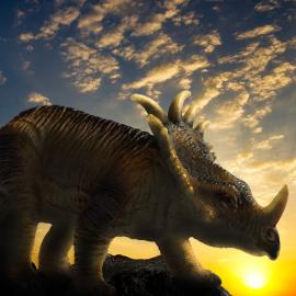 Dinosaurs park