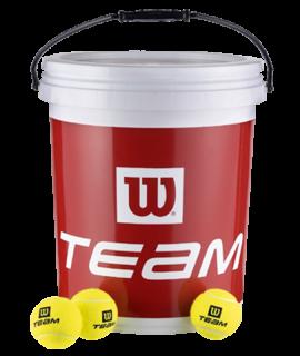 Wilson Team W Trainer Balls