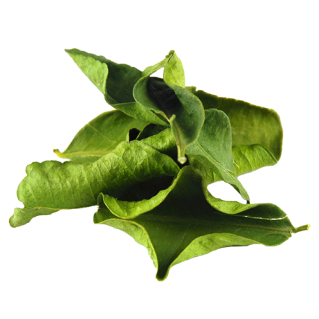 Organic Dried Kaffir Lime Leaves