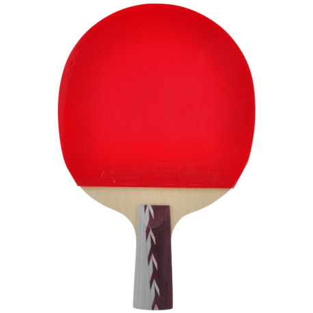 DHS Ping Pong Paddle A4006, Table Tennis Racket