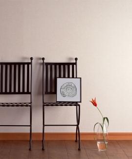 Home Interior Concepts