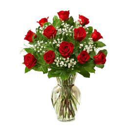 Roses - One Dozen