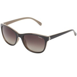 Polaroid Sunglasses Polarized P8339s Wayfarer Sunglasses