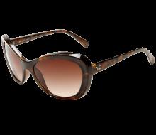 D&G Dolce & Gabbana Women's 0DD8083 Butterfly Sunglasses_01