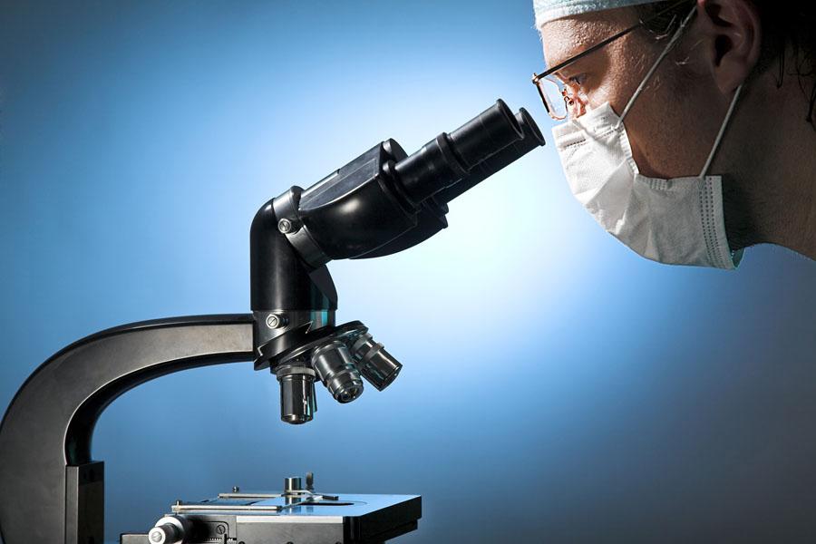 микроскопия нитей мицелия