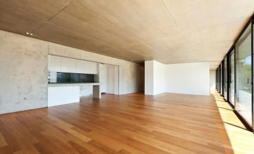 Gallery: Pellentesque non