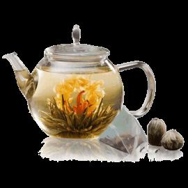 Celestial Seasonings Tea Sampler