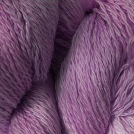 Oak Gall and Dhak (Tesu Flower) BFL Sock Yarn