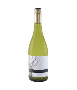 2008 ONEHOPE California Sauvignon Blanc