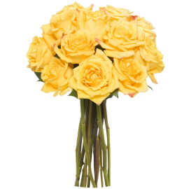 12 Long Stem Yellow Roses - Without Vase