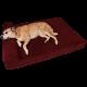 Big Barker 7 Pillow Top Orthopedic Dog Bed for Large