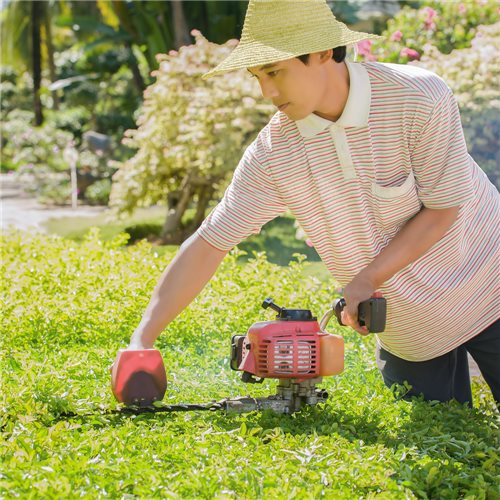 Lawnmower equates shrub in the garden