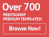 Prestashop themes from templatemonster.com