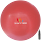 Fitness Exercise and Stability Ball