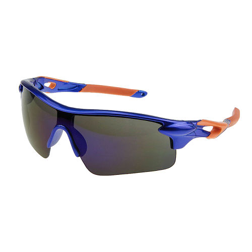 Windproof Sunglasses+Box Polarized Goggles