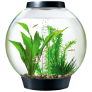 biorb_aquarium_kits_with_lights_1