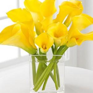 beauty_calla_lily_bouquet_2