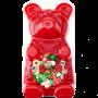 IT'SUGAR-Giant-27LB-Gummy-Bear-01