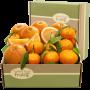 Golden-State-Fruit-California-Fruit-Gift-Box_2