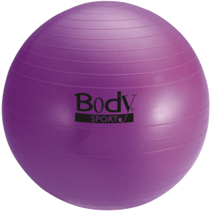 Body Sport Fitness Ball_2