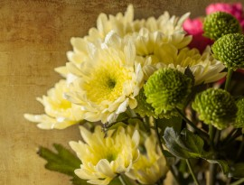 Bouquet of yellow flowers