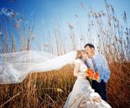 Wedding Planning Basics