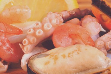 Phasellus fringilla