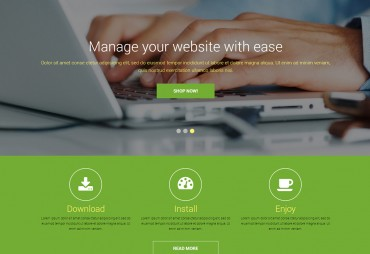 WordPress Websites & Themes