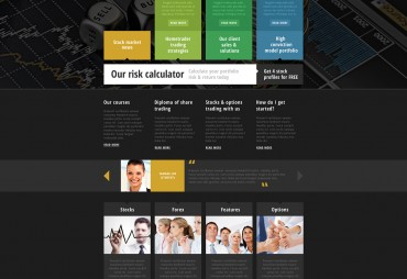 Professional Website Build